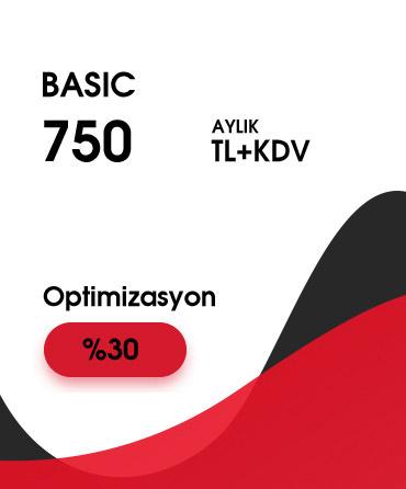 Basic SEO Fiyatları